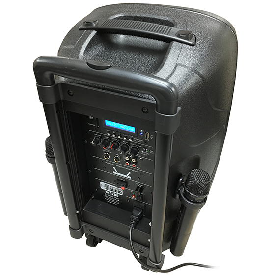 Battery Powered Portable Pa System With 2 Wireless Microphones